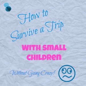How to Survive a Trip with Small Children
