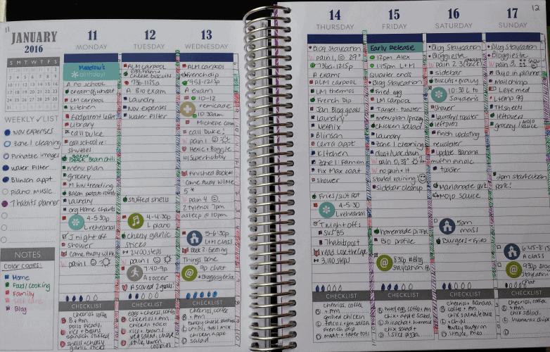 PPP weekly calendar bujo style