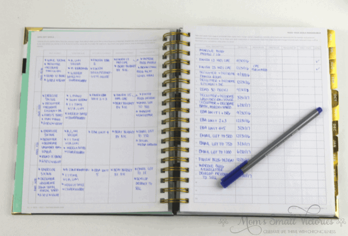 Day Designer planner review goalsetting page example completed