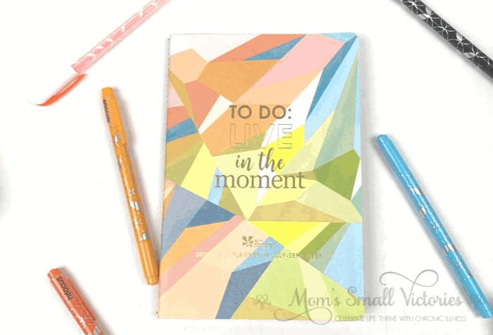 the Erin Condren Daily Petite Planner volume 3 contains daily planning pages for July to Sept 2020.